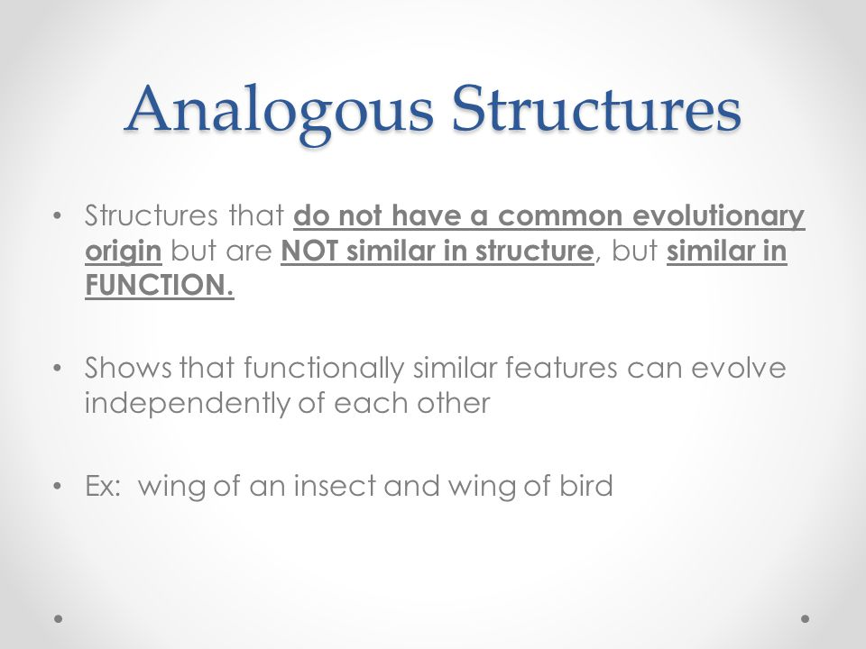 Analogous Structures Structures that do not have a common evolutionary origin but are NOT similar in structure, but similar in FUNCTION.