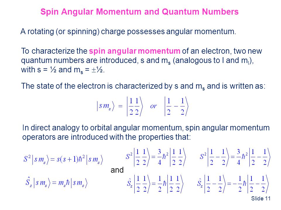 Spin Angular Momentum and Quantum Numbers