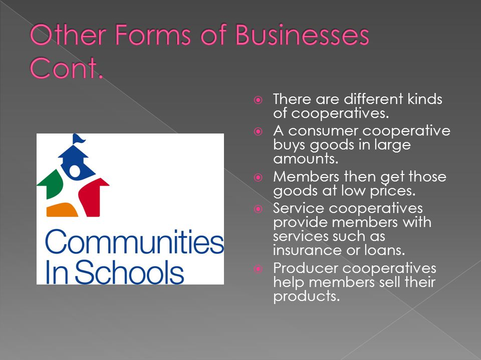 Other Forms of Businesses Cont.