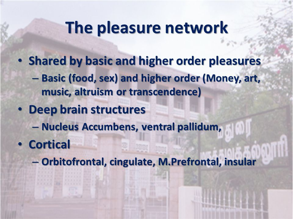 The pleasure network Shared by basic and higher order pleasures