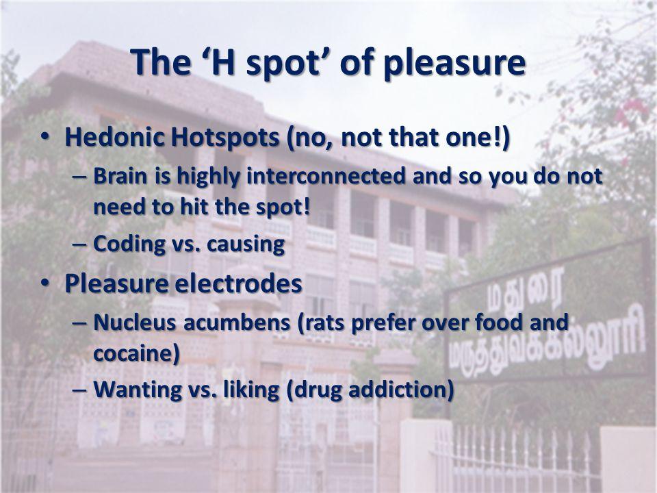 The 'H spot' of pleasure