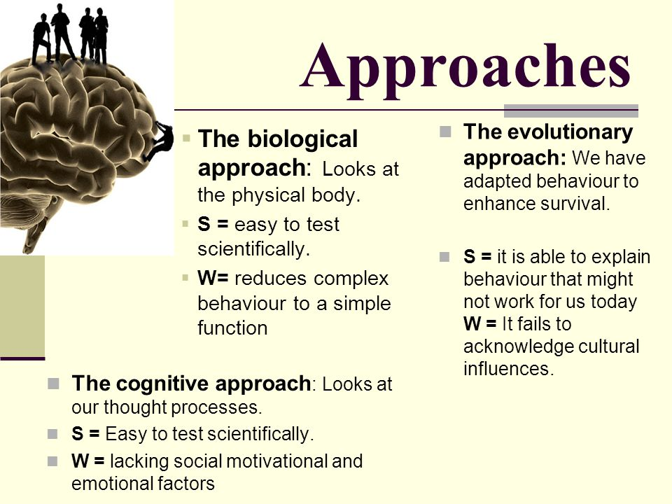 Approaches The biological approach: Looks at the physical body.