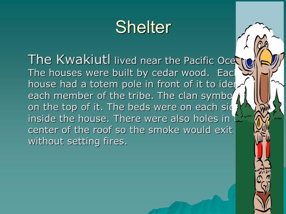 Shelter