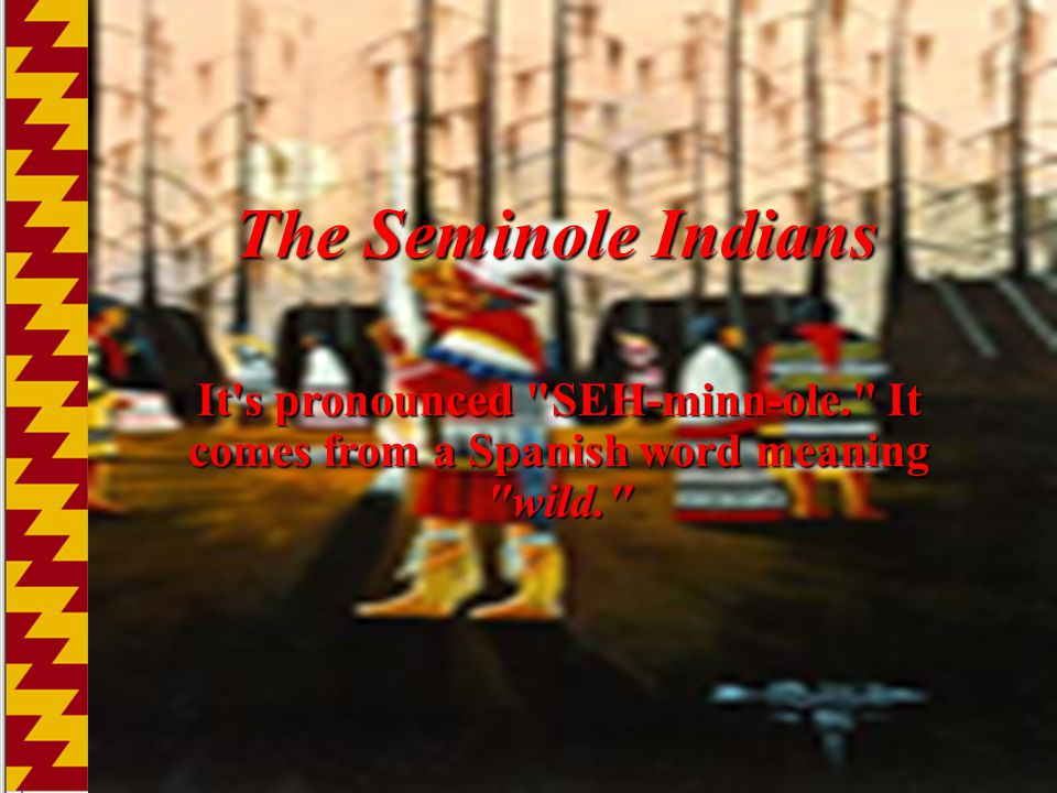 The Seminole Indians It s pronounced SEH-minn-ole. It comes from a Spanish word meaning wild.