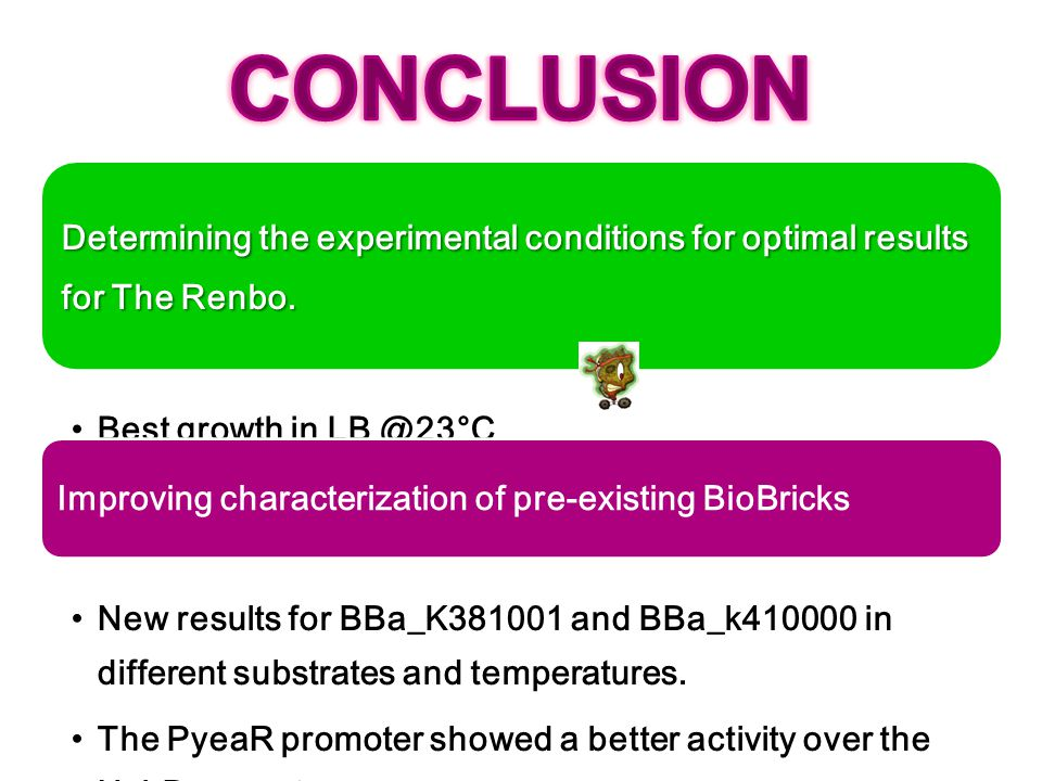CONCLUSION Determining the experimental conditions for optimal results for The Renbo. Best growth in LB @23°C.