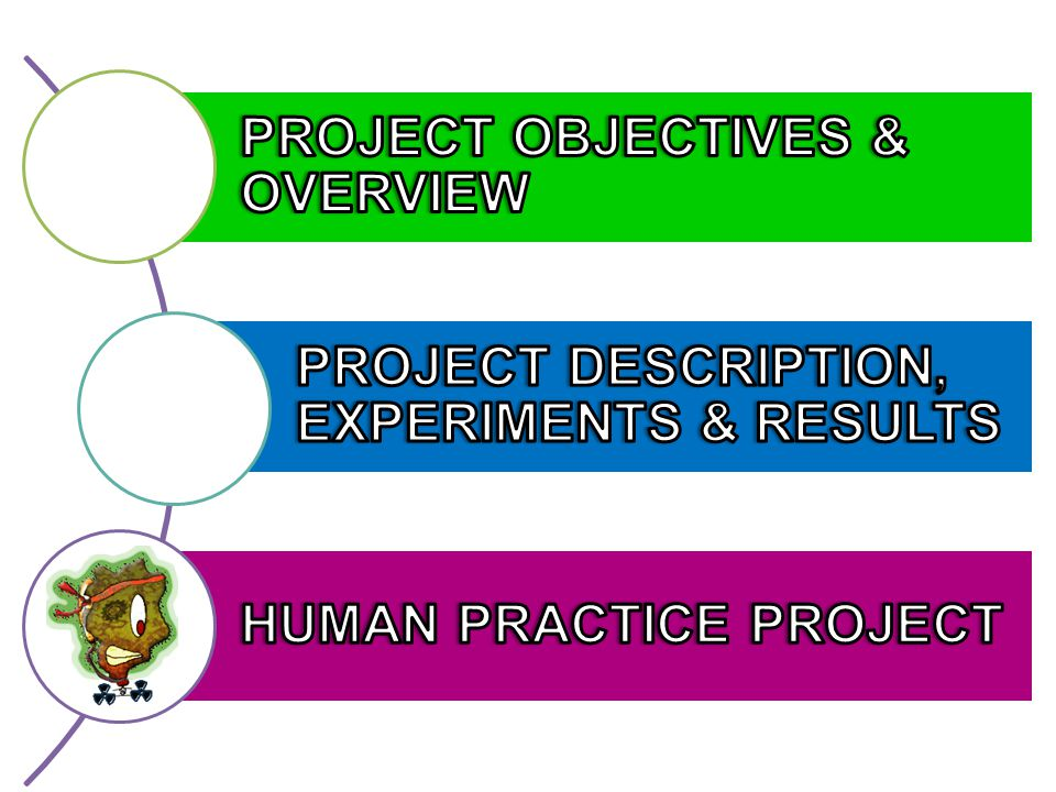 PROJECT OBJECTIVES & OVERVIEW