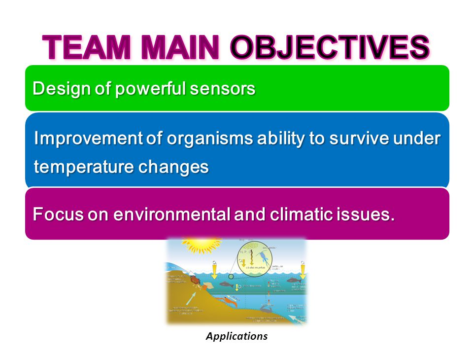 TEAM MAIN OBJECTIVES Design of powerful sensors