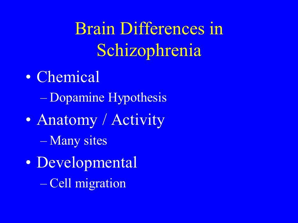 Brain Differences in Schizophrenia