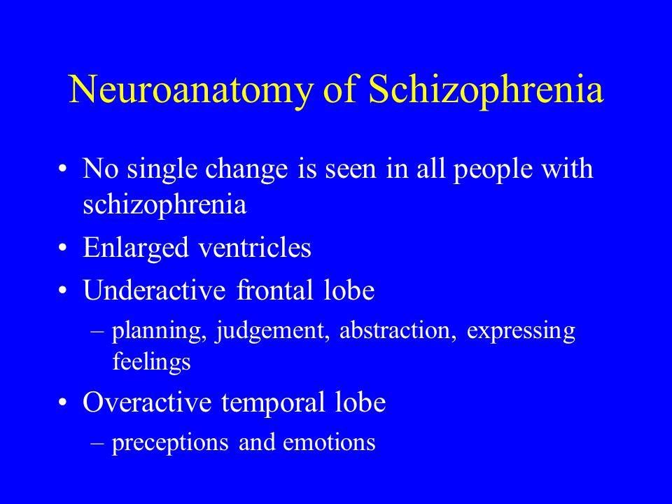 Neuroanatomy of Schizophrenia