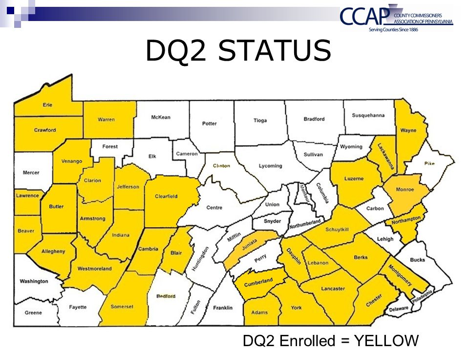 DQ2 Status Amy DQ2 Enrolled = YELLOW