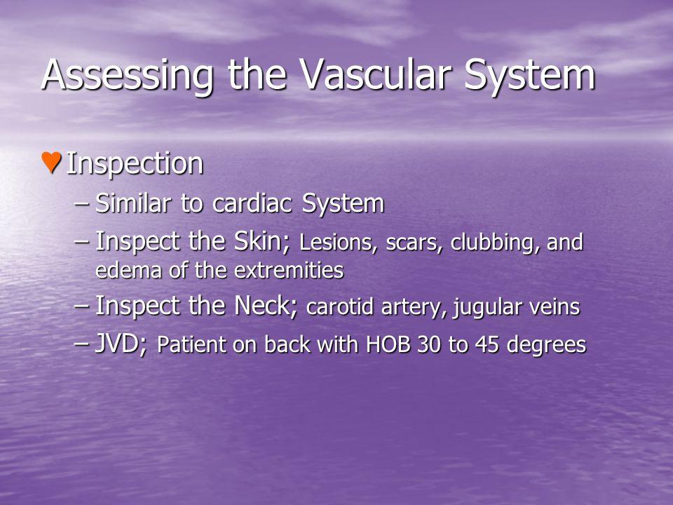 Assessing the Vascular System