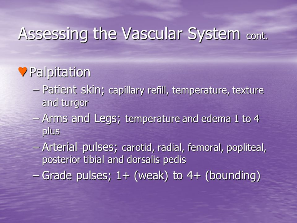 Assessing the Vascular System cont.