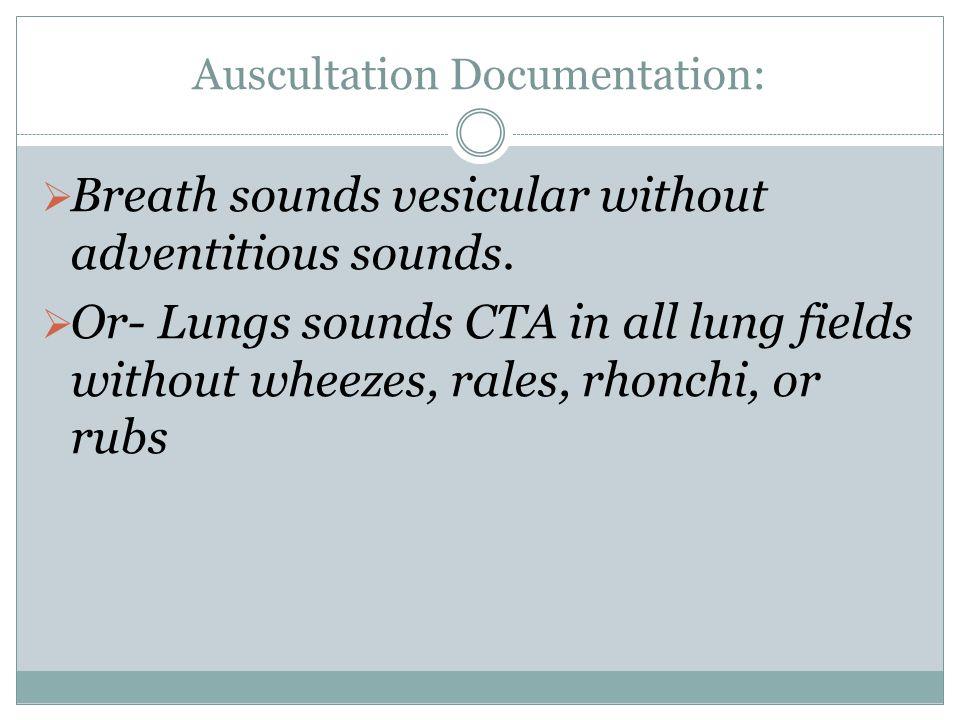 Auscultation Documentation: