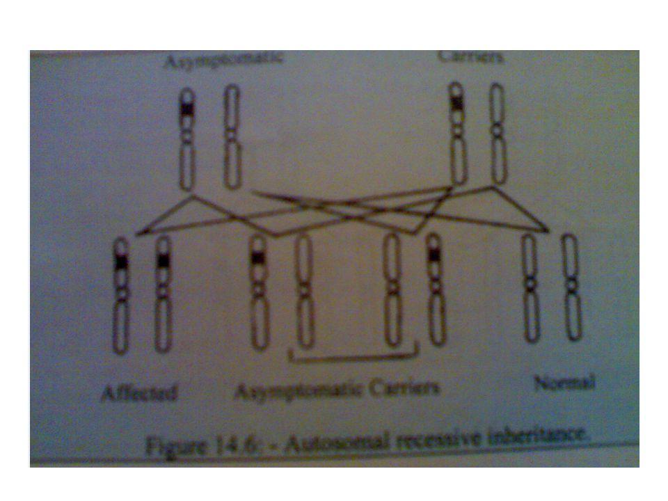 Autosomal recessive inheritence
