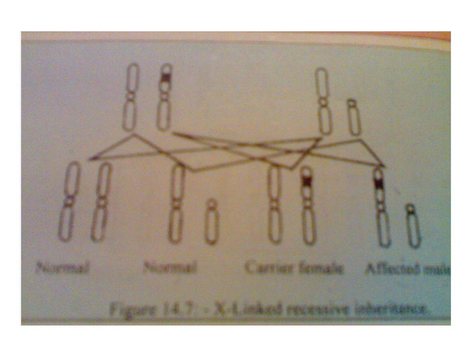 X-linked recessive