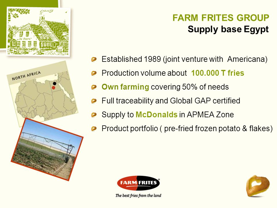 FARM FRITES GROUP Supply base Egypt