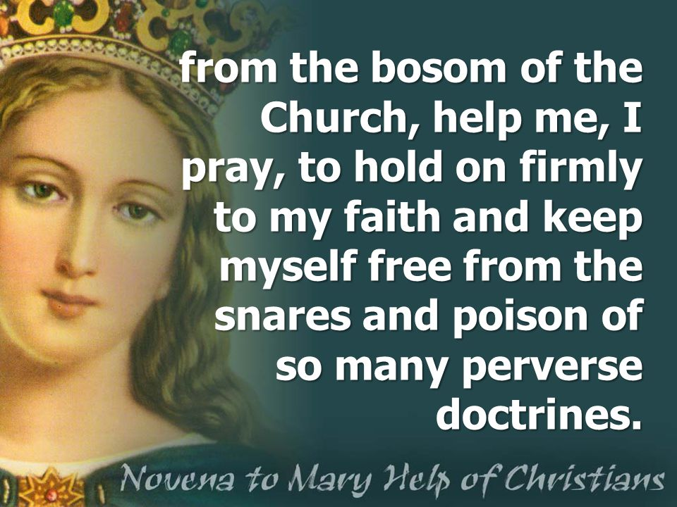 from the bosom of the Church, help me, I pray, to hold on firmly to my faith and keep myself free from the snares and poison of so many perverse doctrines.