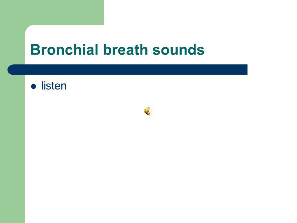 Bronchial breath sounds