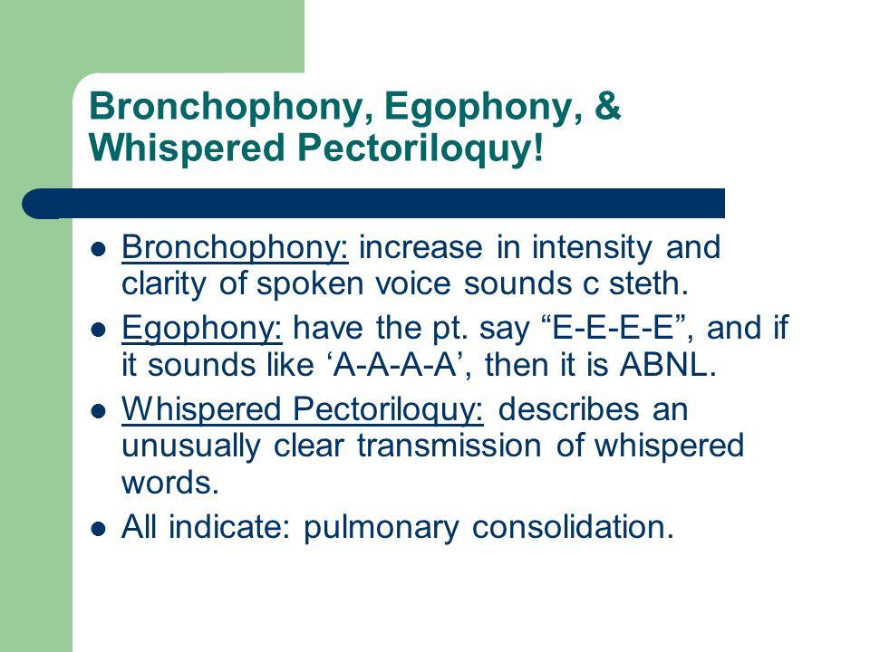 Bronchophony, Egophony, & Whispered Pectoriloquy!