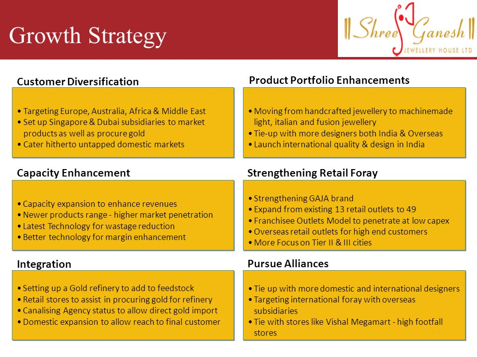 Growth Strategy Customer Diversification