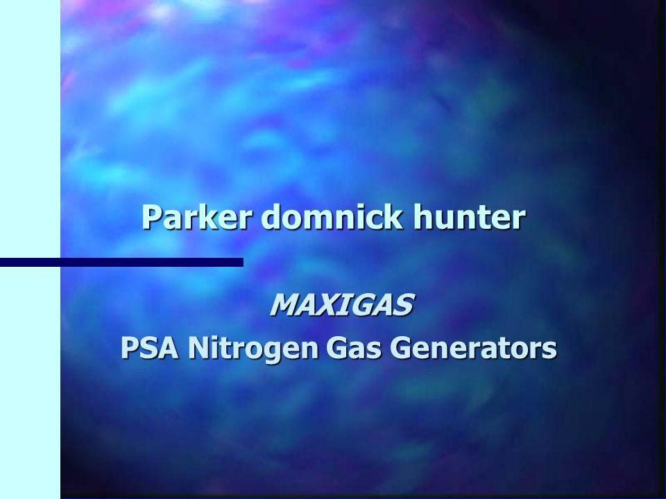 MAXIGAS PSA Nitrogen Gas Generators