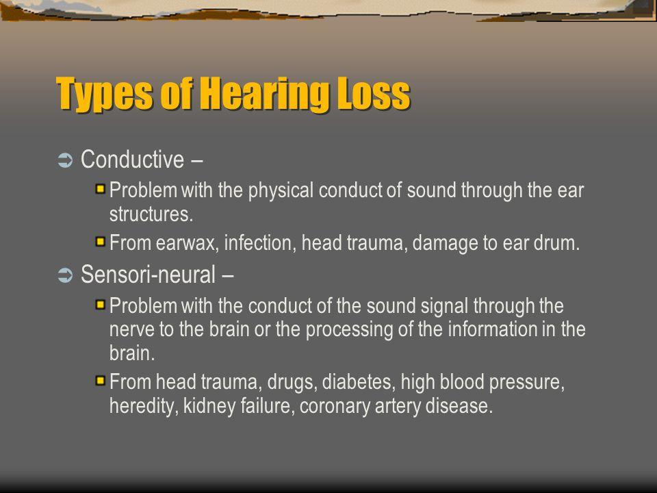 Types of Hearing Loss Conductive – Sensori-neural –