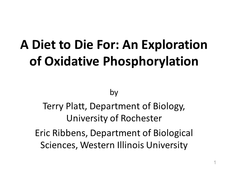 A Diet to Die For: An Exploration of Oxidative Phosphorylation