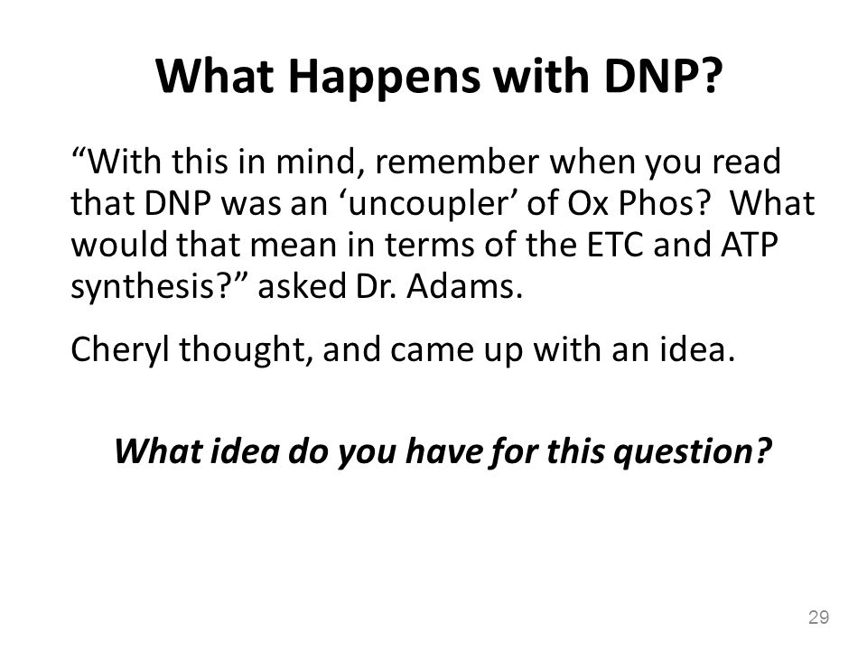 What Happens with DNP