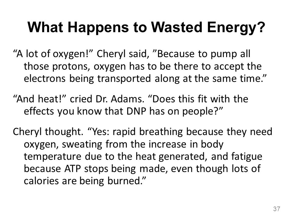 What Happens to Wasted Energy