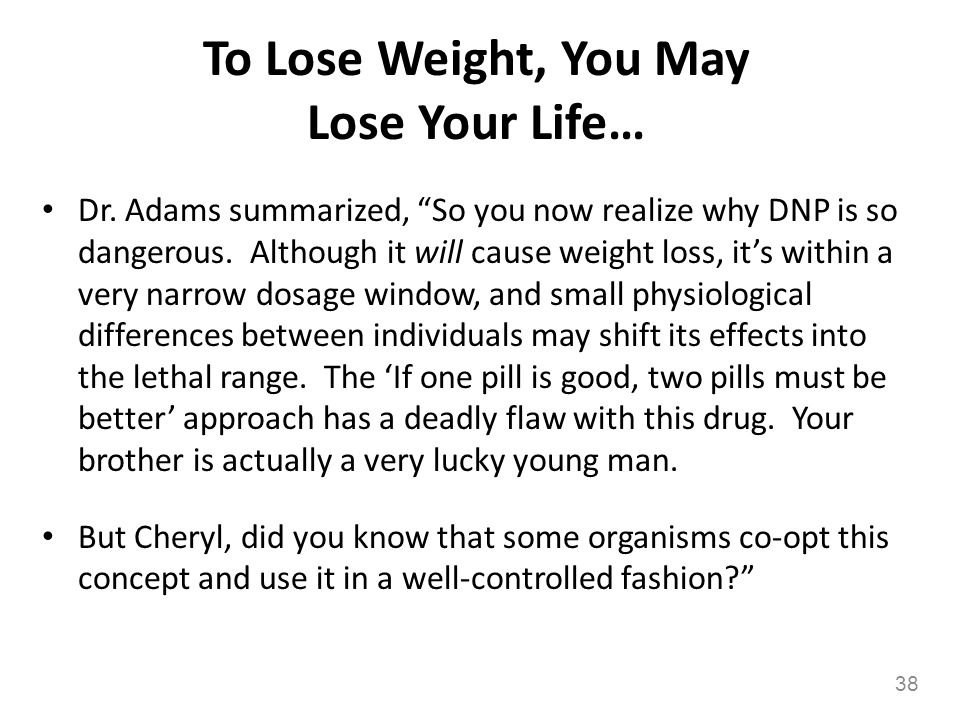 To Lose Weight, You May Lose Your Life…