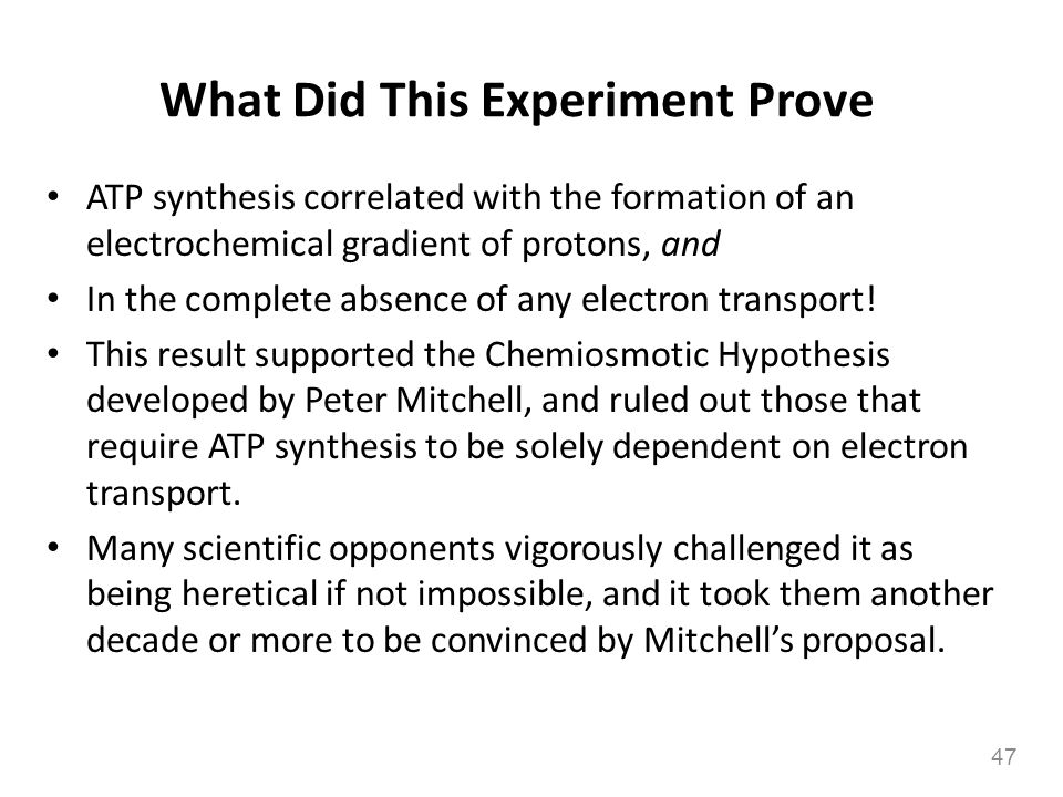 What Did This Experiment Prove