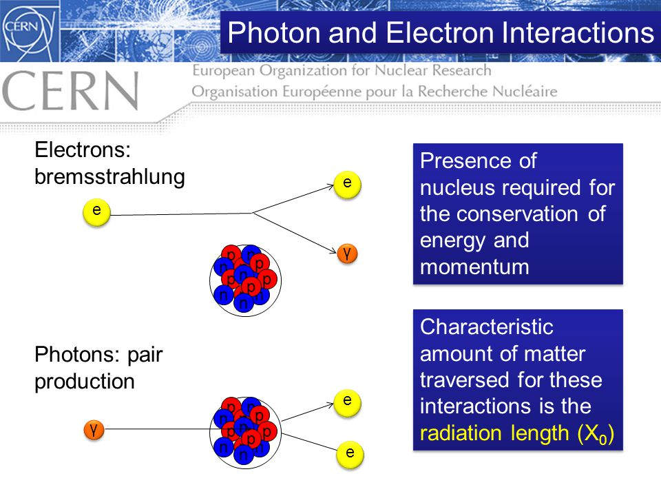 Photon and Electron Interactions