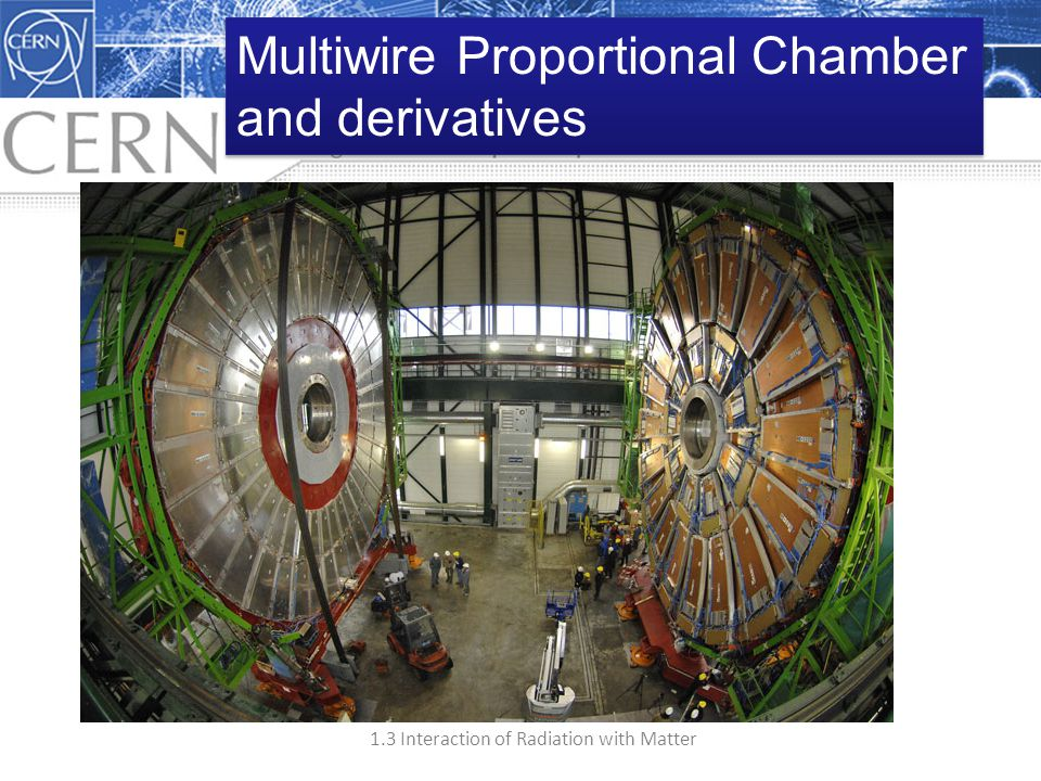 Multiwire Proportional Chamber
