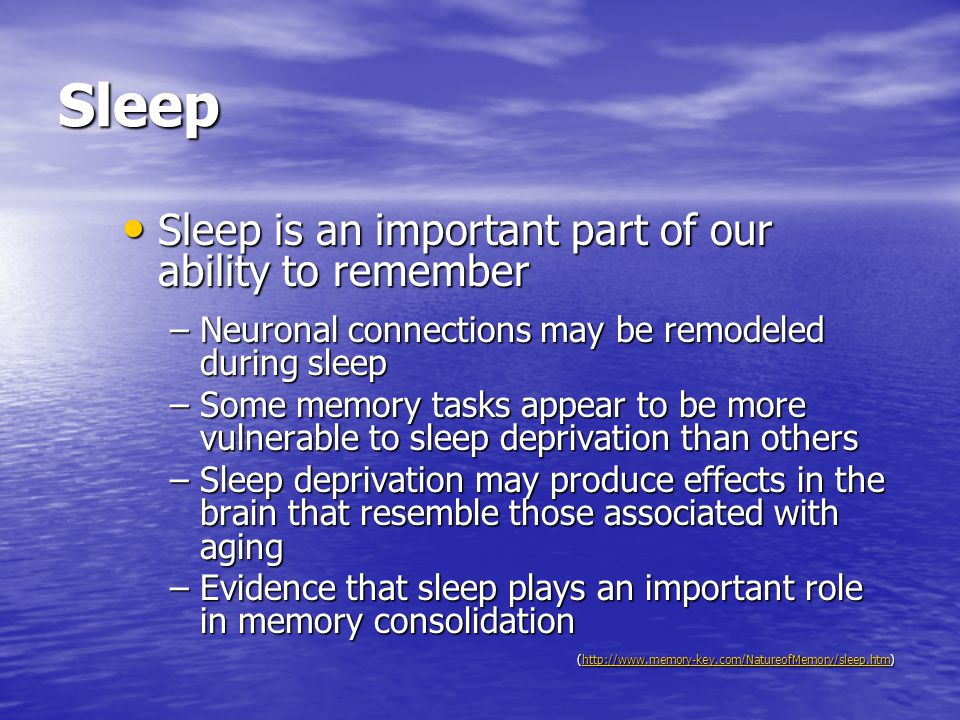 Sleep Sleep is an important part of our ability to remember