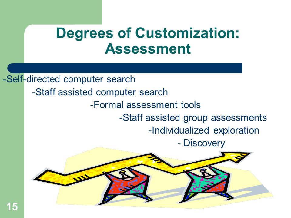 Degrees of Customization: Assessment