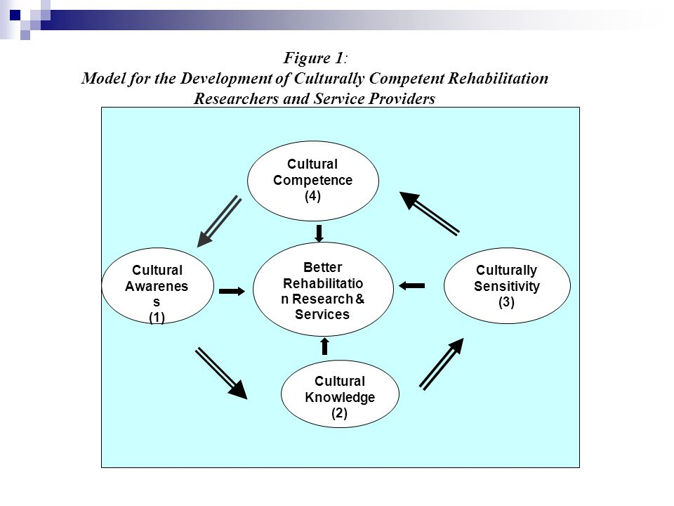 Model for the Development of Culturally Competent Rehabilitation