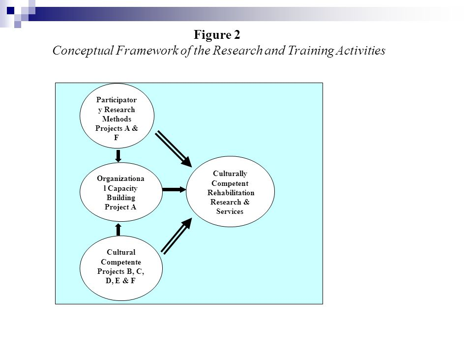 Participatory Research Methods Organizational Capacity Building