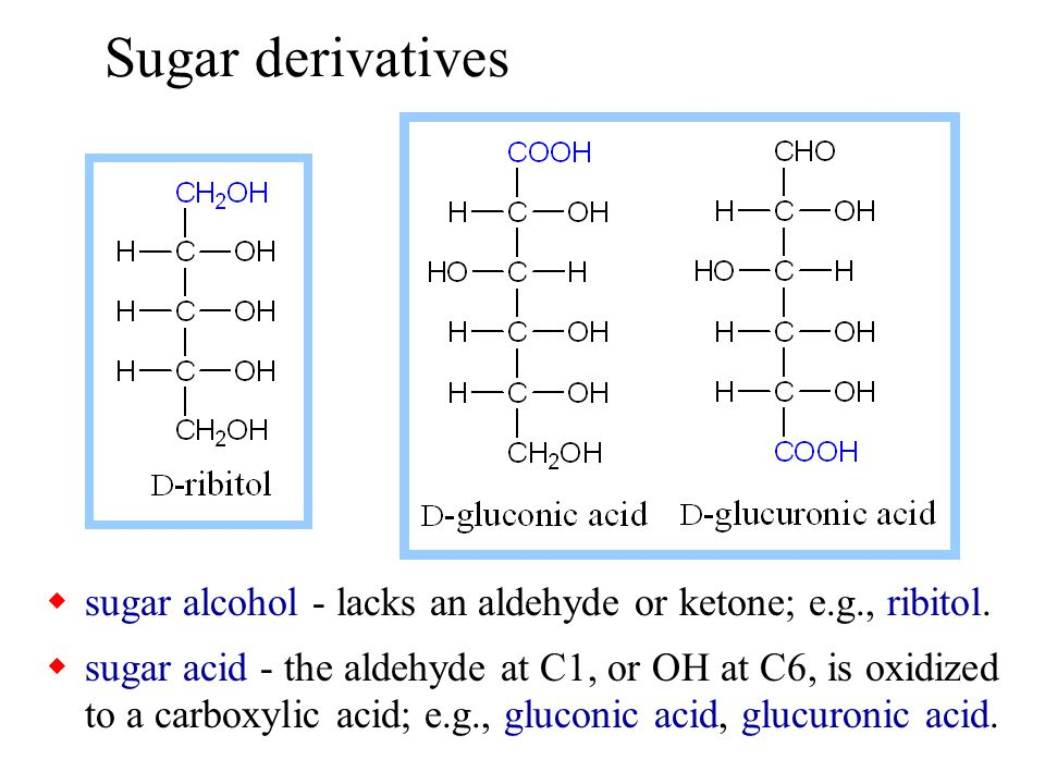 Sugar derivatives sugar alcohol - lacks an aldehyde or ketone; e.g., ribitol.