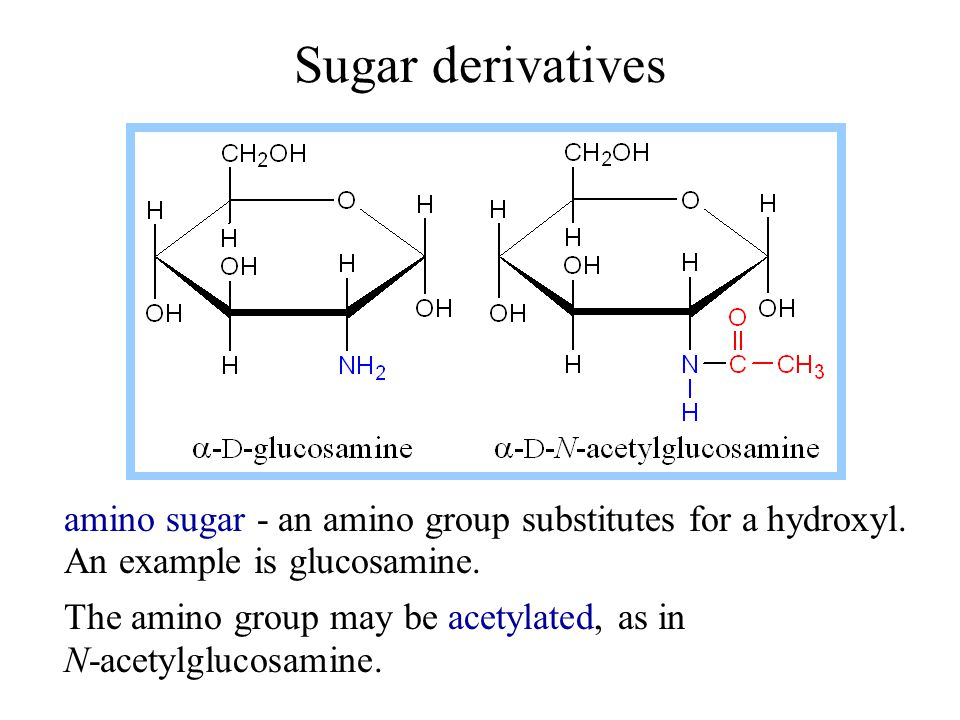 Sugar derivatives amino sugar - an amino group substitutes for a hydroxyl. An example is glucosamine.