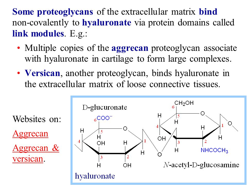Some proteoglycans of the extracellular matrix bind non-covalently to hyaluronate via protein domains called link modules. E.g.: