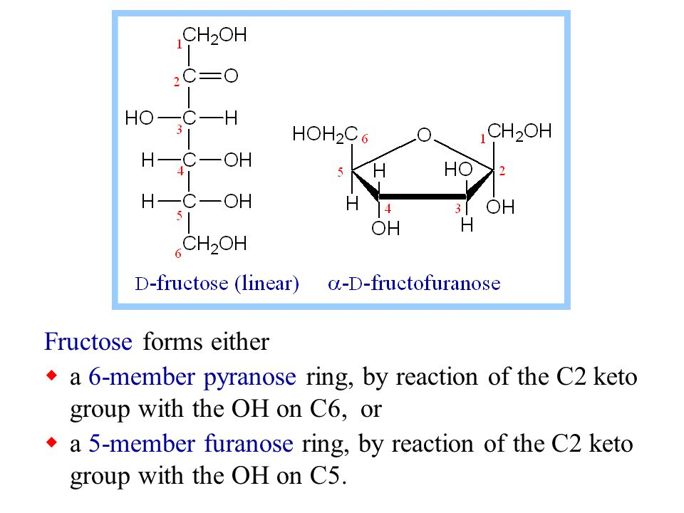 Fructose forms either a 6-member pyranose ring, by reaction of the C2 keto group with the OH on C6, or.