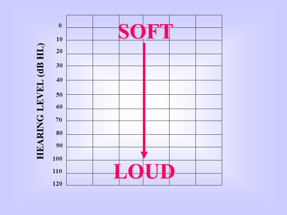 SOFT 10 20 30 40 50 HEARING LEVEL (dB HL) 60 70 80 90 100 LOUD 110 120