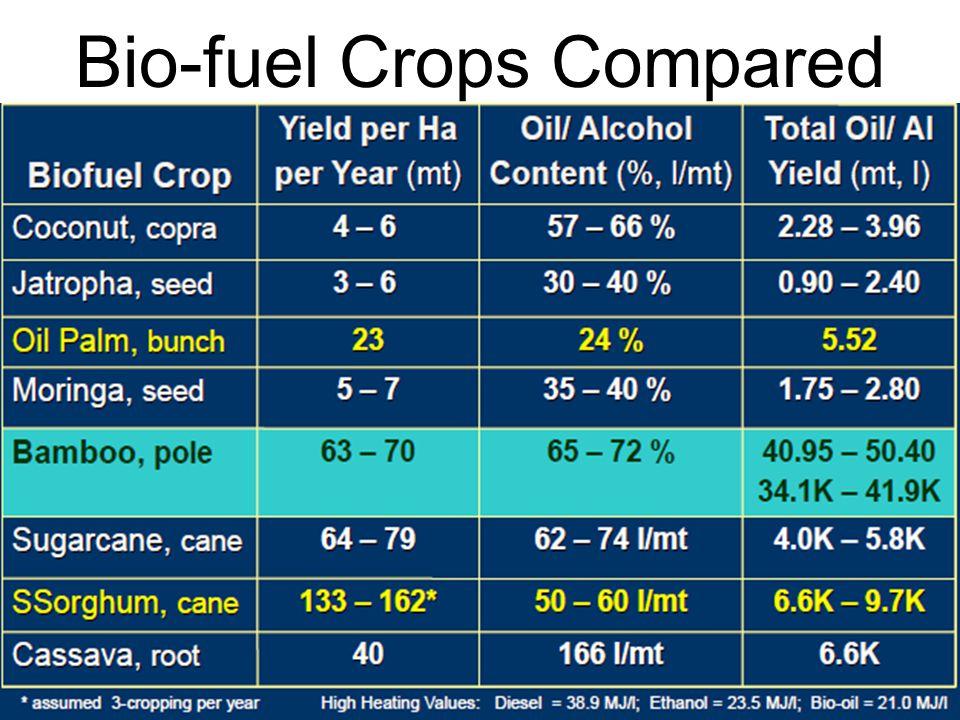 Bio-fuel Crops Compared