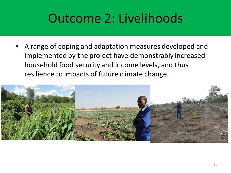 Outcome 2: Livelihoods