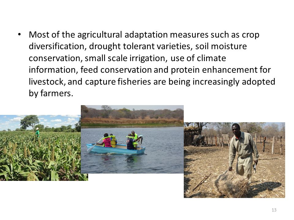 Most of the agricultural adaptation measures such as crop diversification, drought tolerant varieties, soil moisture conservation, small scale irrigation, use of climate information, feed conservation and protein enhancement for livestock, and capture fisheries are being increasingly adopted by farmers.