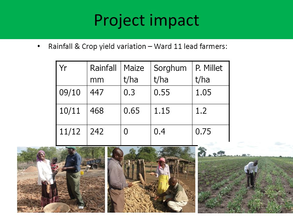 Project impact Rainfall & Crop yield variation – Ward 11 lead farmers:
