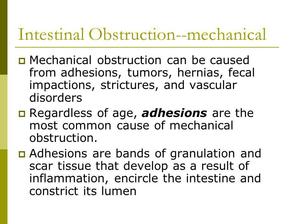 Intestinal Obstruction--mechanical