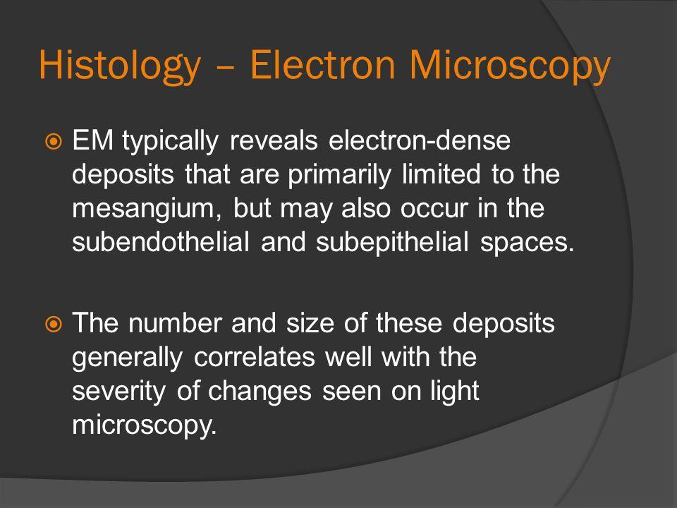 Histology – Electron Microscopy