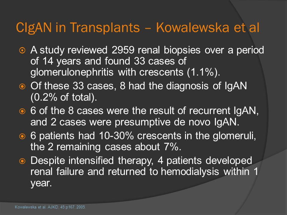 CIgAN in Transplants – Kowalewska et al