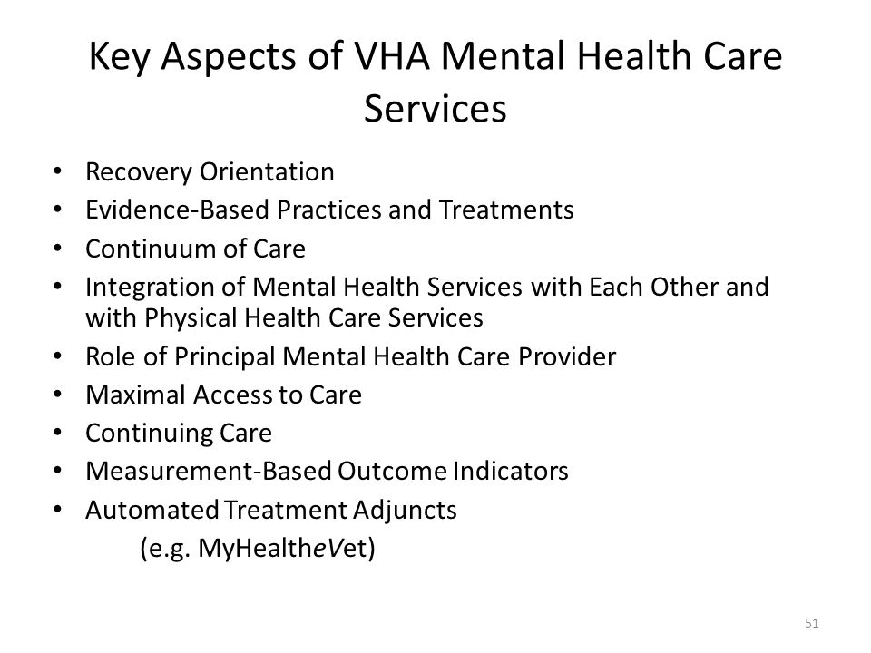 Key Aspects of VHA Mental Health Care Services